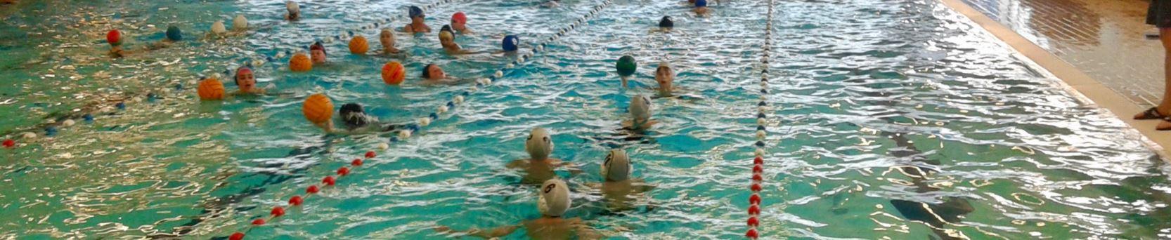 Leukste zwemclub van Haarlem